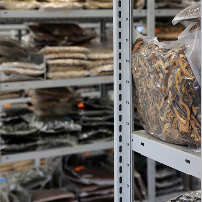 V nabídce máme přes 450 druhů bylin.